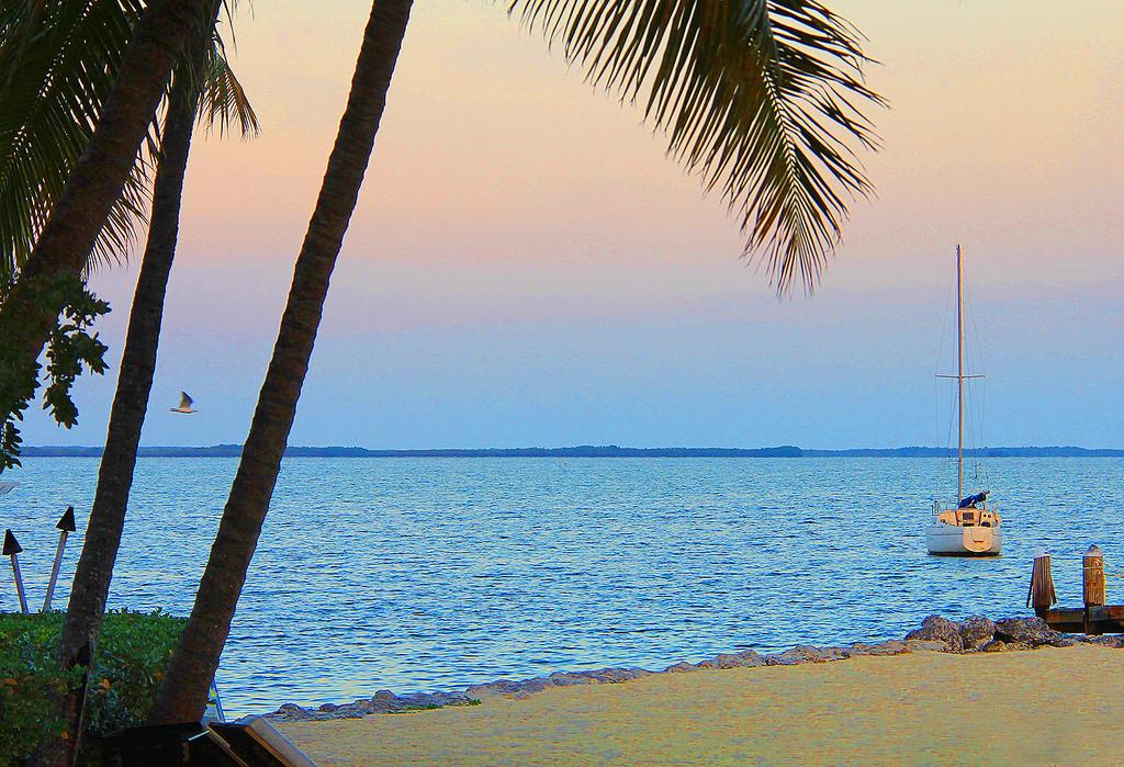 Key Largo, Florida Keys, Taken by Diann Corbett, 03/2014.