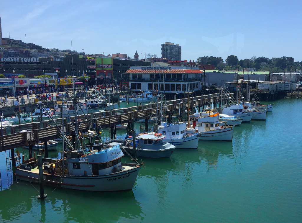 View from Alioto's, Fisherman's Wharf, San Francisco