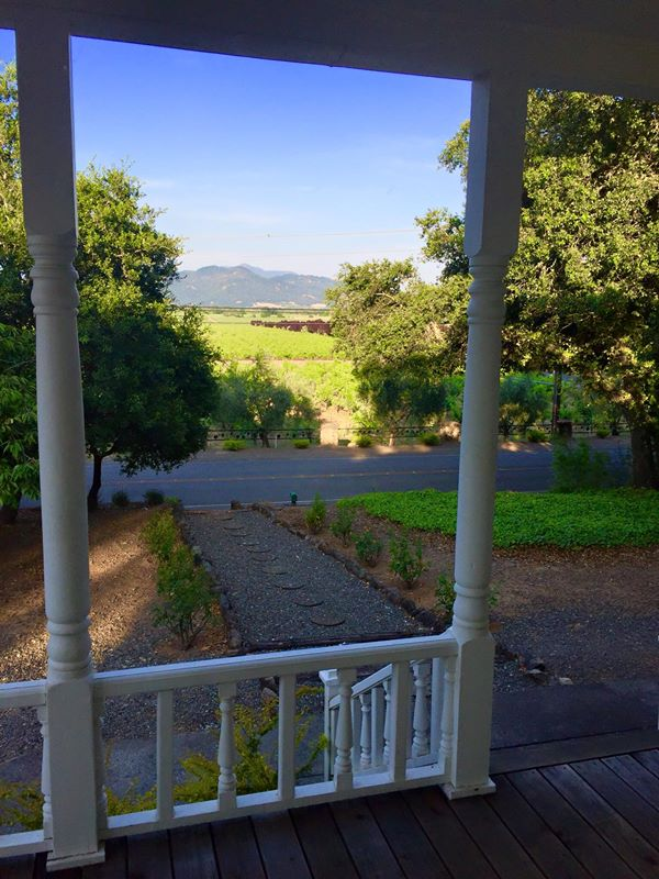 View from the Room, Trentadue Estate View, Geyservile, California